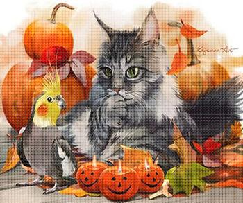 Котик и попугай на Хэллоуин