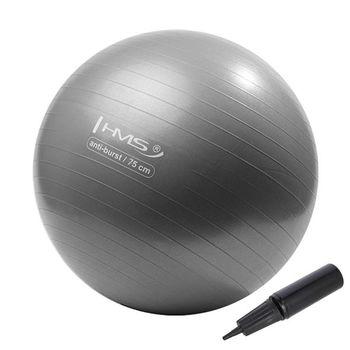 Мяч гимнастический с насосом d=75 см HMS 17-42-125 grey (4826)