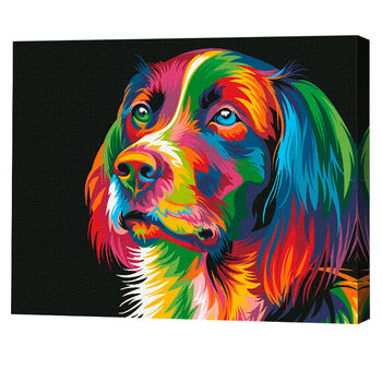 cumpără Câine curcubeu în Chișinău