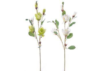 Ветка магнолии в 5 цветков, 84cm 2вида