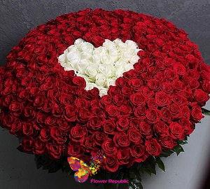 купить Букет из 101 красной и белых роз ( в форме сердца) роз ГОЛЛАНДСКИЕ ПРЕМИУМ 80-90СМ в Кишинёве