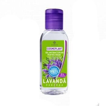 купить Антибактериальный гель для рук с экстрактом Лаванды 50ml, Viorica Cosmetic в Кишинёве