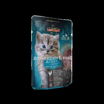 купить Leonardo kitten (с курицей) в Кишинёве