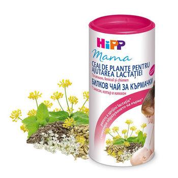 cumpără Hipp 2348 Ceai pentru ajutarea lactatiei 200g în Chișinău