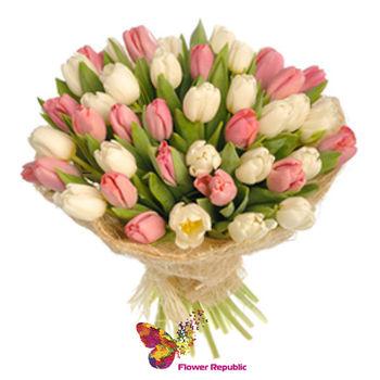 купить 35 Кремовых тюльпанов в Кишинёве