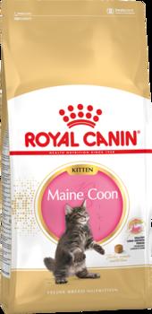 cumpără Royal Canin MAINE COON KITTEN 10kg în Chișinău