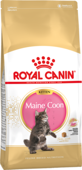 купить Royal Canin MAINE COON KITTEN 2 kg в Кишинёве