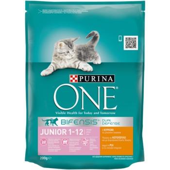 купить Purina ONE Junior (для котят от 1-12 мес., беременных или кормящих кошек), 200гр в Кишинёве