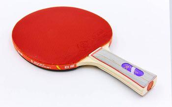 Ракетка для настольного тенниса Giant Dragon 3* Offensive (591)