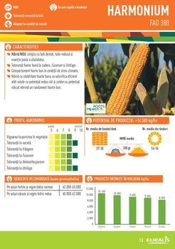 купить Гармониум - Семена кукурузы - Евралис Семанс в Кишинёве