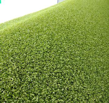 купить Ландшафтная профессиональная трава, ESTANCIA в Кишинёве