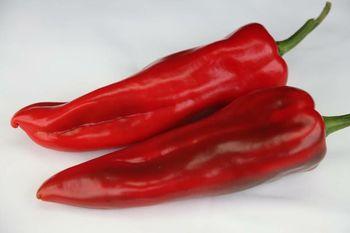 купить Кампари F1 - семена гибрида перца красного - Денфилдт в Кишинёве