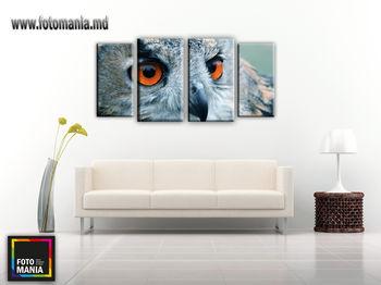 Картина напечатанная на холсте - Триптих из 4 частей Сова 0001