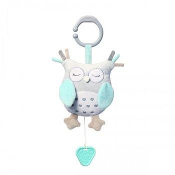купить Babyono игрушка с музыкальной шкатулкой Owl Sofia в Кишинёве