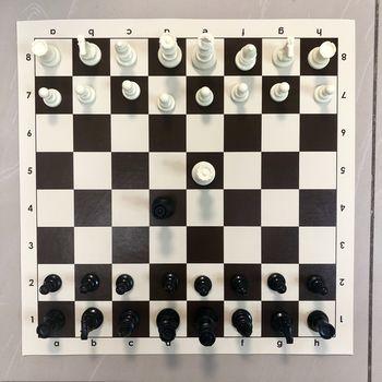 Шахматные фигуры пластиковые, утяжеленные №6 French DCP03H (5246)