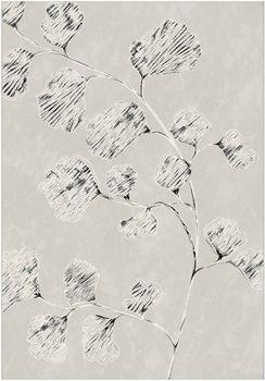Ковер Canvas 18208-052