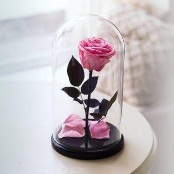 купить Вечная малиновая Роза в колбе в Кишинёве
