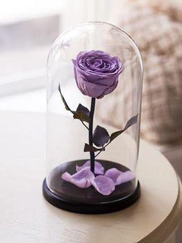 купить Вечная Фиолетовая Роза в колбе в Кишинёве