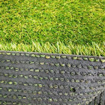 купить Ландшафтная трава, FLORIDA в Кишинёве