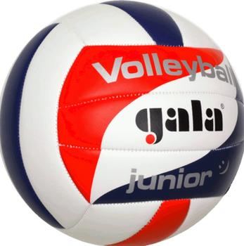 Мяч волейбольный №5 Gala Junior 5093 (3925)