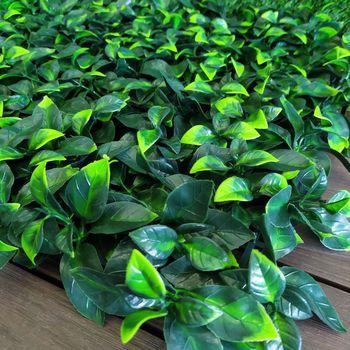 купить Декоративное покрытие Лимонное дерево 50 сm x 50 cm в Кишинёве
