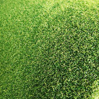Ландшафтная трава, SCHOOLS, плотный ворс зелёного цвета