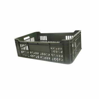 купить Ящики из пластика А103, 530х350х235 мм, зелёный в Кишинёве