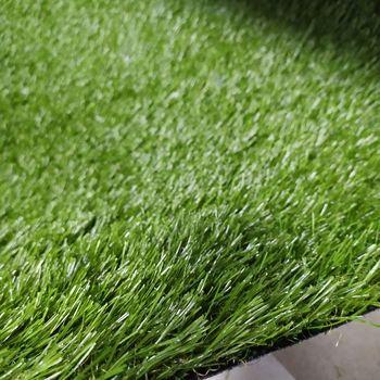 Ландшафтная трава, NATURE (2m.)