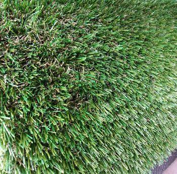 Ландшафтная трава, GRACE (4m.)
