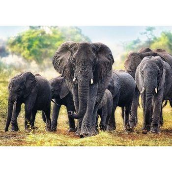 "10442Trefl Puzzles-""1000"" - African elephants"