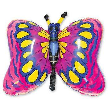 купить Бабочка в Кишинёве