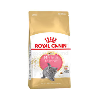 купить Royal Canin BRITISH SHORTHAIR KITTEN 2 kg в Кишинёве