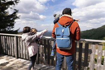 купить Сумка-рюкзак Babymoov Sancy Blue в Кишинёве