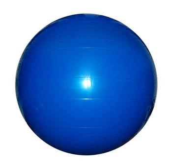 Мяч гимнастический с насосом d=65 см (8630)
