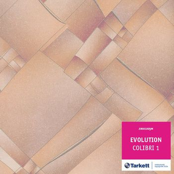 Tarkett Линолеум Evolution Colibri 1