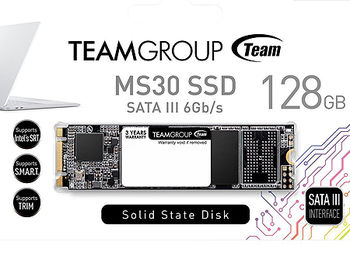 256GB SSD M.2 Type 2280 Team MS30 TM8PS7256G0C101, Read 550MB/s, Write 470MB/s (solid state drive intern SSD/внутрений высокоскоростной накопитель SSD)