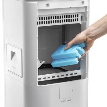 купить Охладитель и увлажнитель воздуха Aircooler TROTEC PAE 49 в Кишинёве