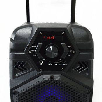 Портативная акустика VESTA PS-D8