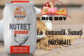 Бройлер Start BigBoy  /25 кг