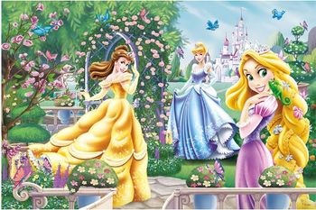 "13141 Trefl Puzzles - ""260"" - A walk before the ball / Disney Princess"
