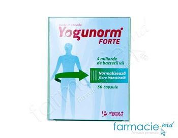 купить Yogunorm Forte caps N15x2 в Кишинёве