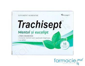 cumpără Trachisept® Mentol si eucalipt comp.de supt N16 (LPH) în Chișinău