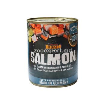 Belcando Salmon лосось с амарантом и тыквой 800 gr