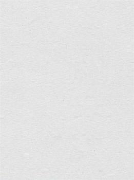 Delfa Ролета тканевая 66х180см белый