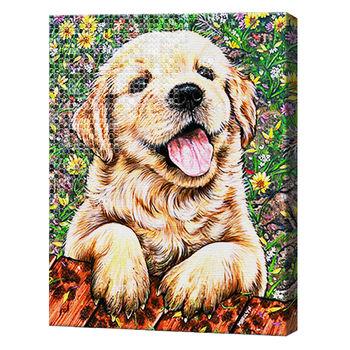 Счастливый, 40x50 см, комбо-набор для росписи номеров + алмазная мозаика, YHDGJ70491