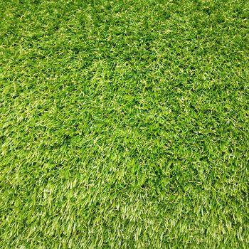 купить Ландшафтная трава RIVIERA, ширина рулона-2м. в Кишинёве