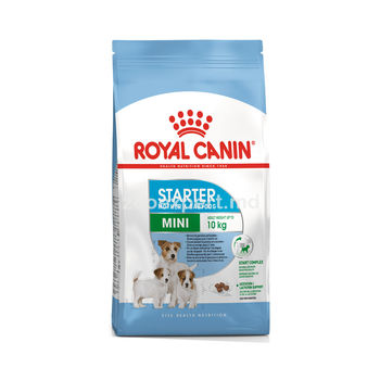 купить Royal Cani MINI STARTER 3kg в Кишинёве
