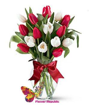 купить Бкет из 15 Тюльпанов микс в Кишинёве