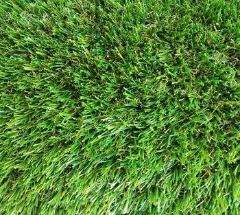 Профессиональная ландшафтная трава IMPRESSIO