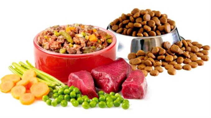 Nutreеuri naturale pentru animale
